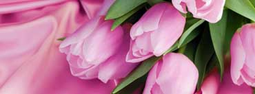 Romantic Tulips Cover Photo