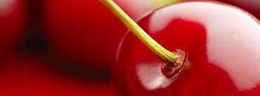 Cherry Cover Photo