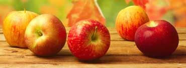 Fall Apples Cover Photo