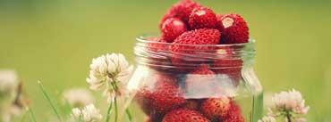 Strawberry Jar Cover Photo