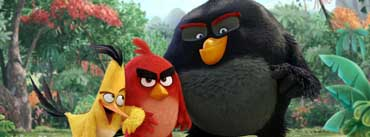 Angry Birds Movie Cover Photo
