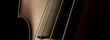 Double Bass Strings Cover Photo