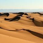 Desert Cover Photos