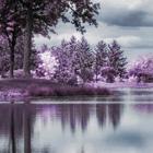 Lake Cover Photos